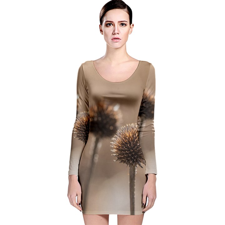 Withered Globe Thistle In Autumn Macro Long Sleeve Velvet Bodycon Dress