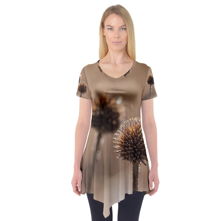 Withered Globe Thistle In Autumn Macro Short Sleeve Tunic