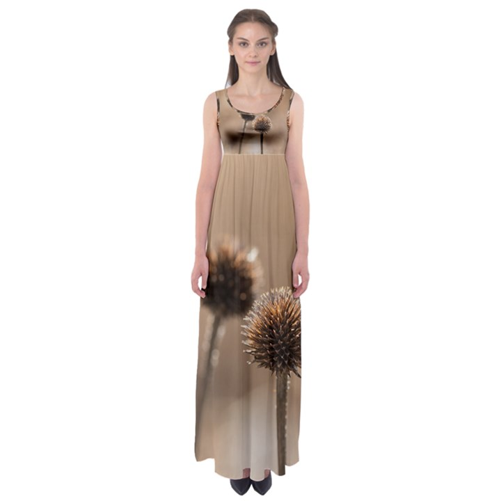 Withered Globe Thistle In Autumn Macro Empire Waist Maxi Dress