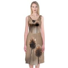 Withered Globe Thistle In Autumn Macro Midi Sleeveless Dress