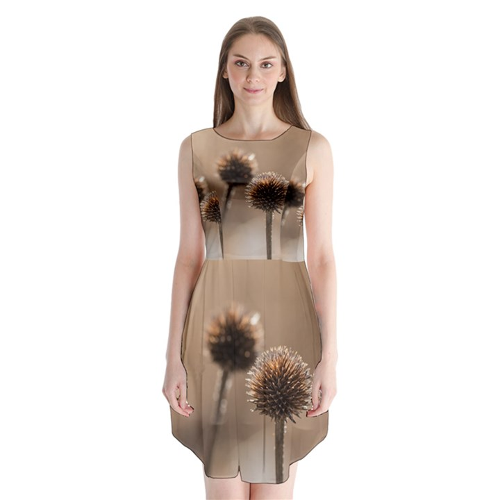 Withered Globe Thistle In Autumn Macro Sleeveless Chiffon Dress
