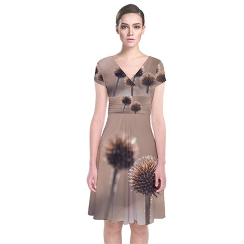 Withered Globe Thistle In Autumn Macro Short Sleeve Front Wrap Dress