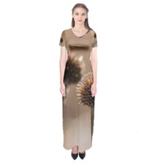 Withered Globe Thistle In Autumn Macro Short Sleeve Maxi Dress