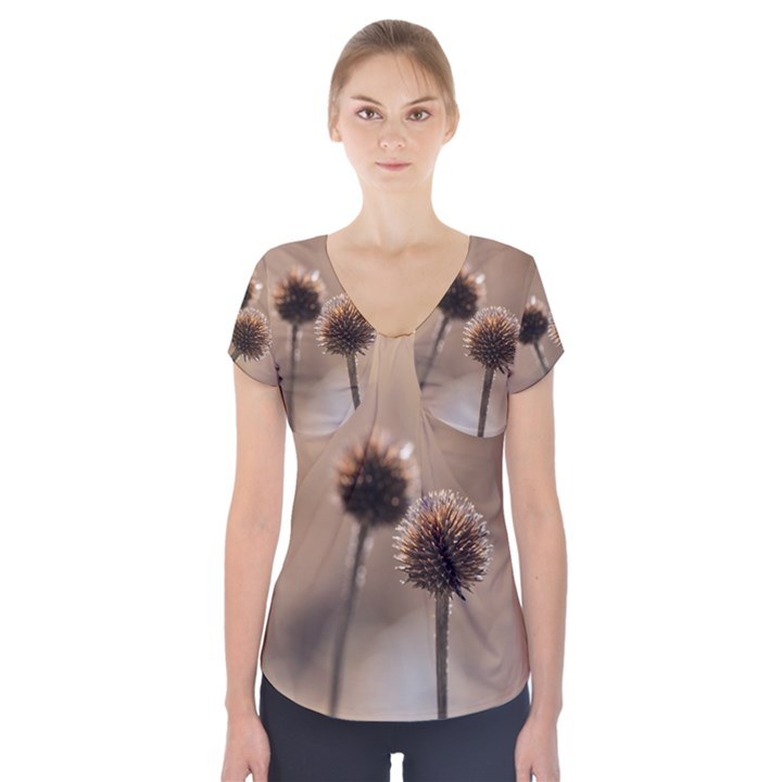 Withered Globe Thistle In Autumn Macro Short Sleeve Front Detail Top