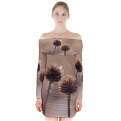 Withered Globe Thistle In Autumn Macro Long Sleeve Off Shoulder Dress