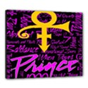 Prince Poster Canvas 24  x 20  View1