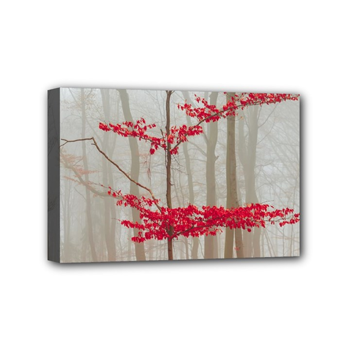 Magic forest in red and white Mini Canvas 6  x 4