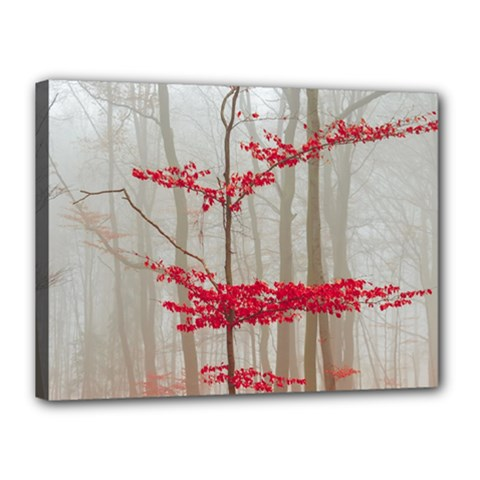 Magic forest in red and white Canvas 16  x 12