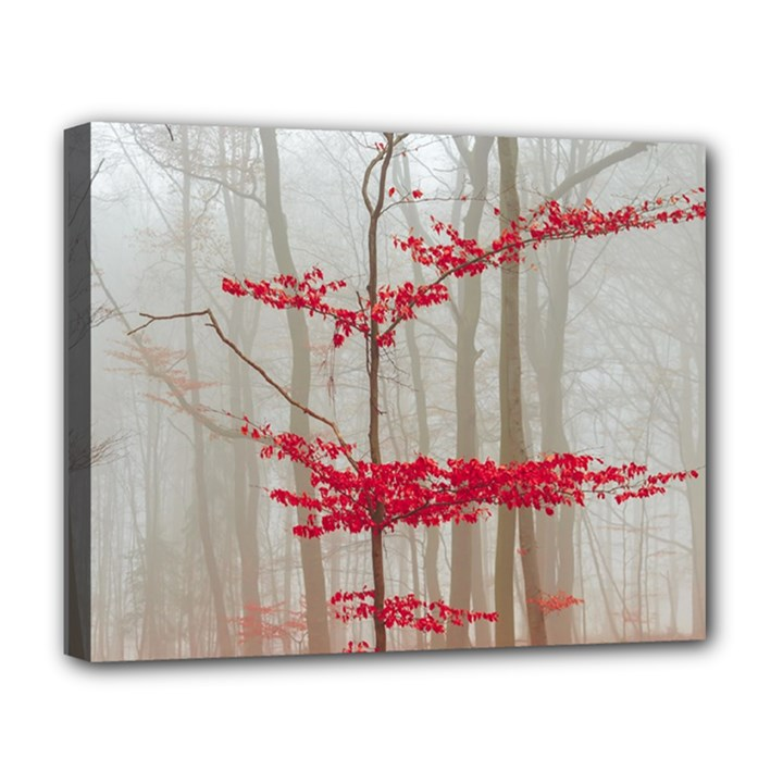 Magic forest in red and white Deluxe Canvas 20  x 16