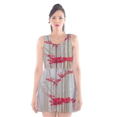 Magic Forest In Red And White Scoop Neck Skater Dress
