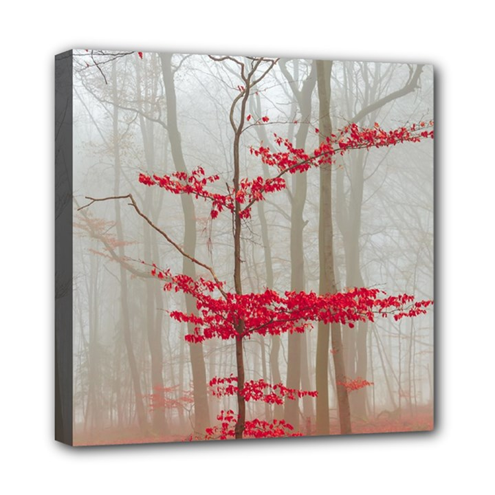 Magic Forest In Red And White Mini Canvas 8  x 8