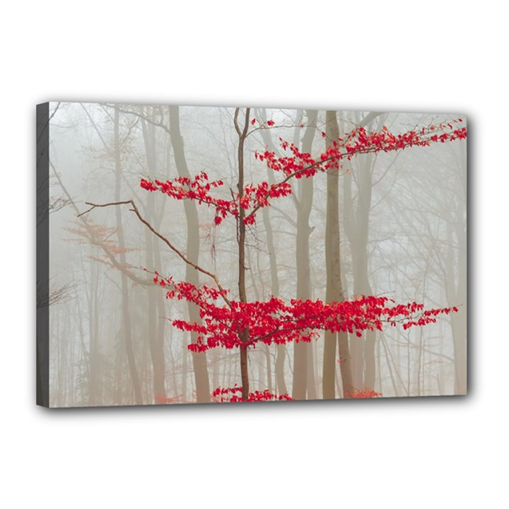 Magic Forest In Red And White Canvas 18  x 12