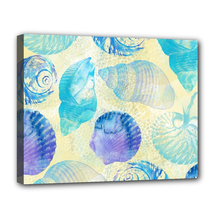 Seashells Canvas 14  x 11