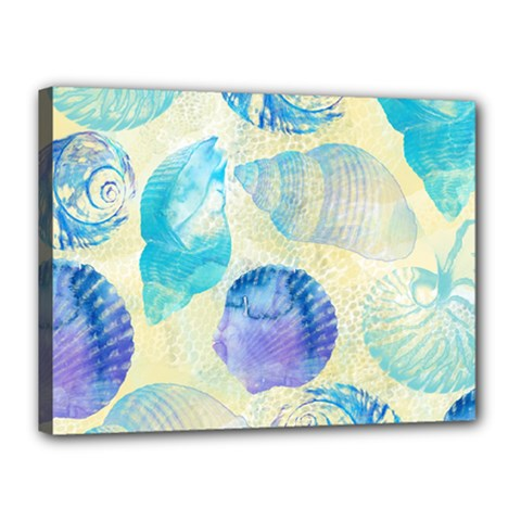Seashells Canvas 16  X 12