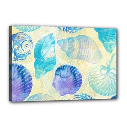 Seashells Canvas 18  X 12