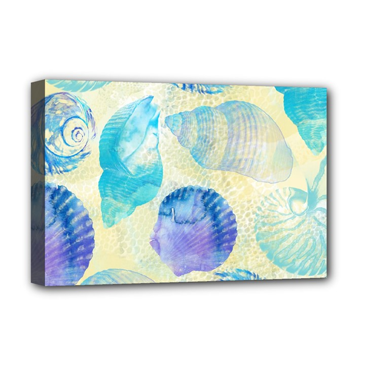 Seashells Deluxe Canvas 18  x 12