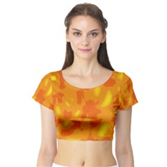 Orange Decor Short Sleeve Crop Top (tight Fit)