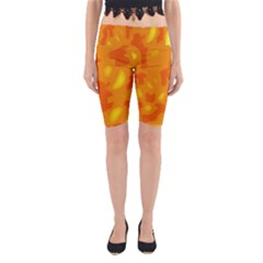 Orange Decor Yoga Cropped Leggings