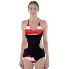 Australian Shepherd Silo Usa Flag Cut Out One Piece Swimsuit