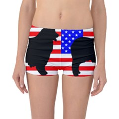 Australian Shepherd Silo Usa Flag Reversible Boyleg Bikini Bottoms