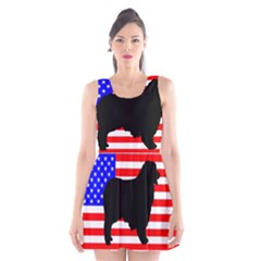 Australian Shepherd Silo Usa Flag Scoop Neck Skater Dress