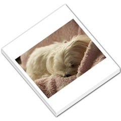 Maltese Sleeping Small Memo Pads