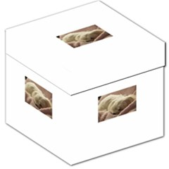Maltese Sleeping Storage Stool 12