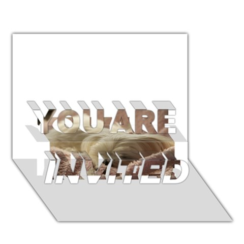 Maltese Sleeping YOU ARE INVITED 3D Greeting Card (7x5)
