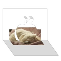 Maltese Sleeping Apple 3D Greeting Card (7x5)