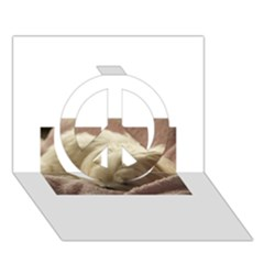 Maltese Sleeping Peace Sign 3D Greeting Card (7x5)
