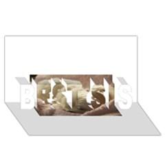 Maltese Sleeping BEST SIS 3D Greeting Card (8x4)