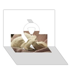 Maltese Sleeping Ribbon 3D Greeting Card (7x5)