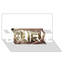 Maltese Sleeping BELIEVE 3D Greeting Card (8x4)