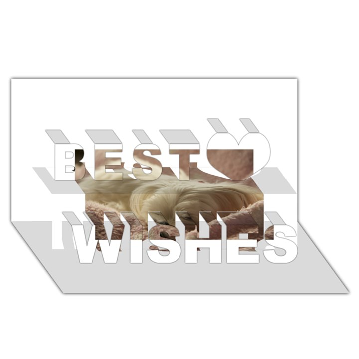 Maltese Sleeping Best Wish 3D Greeting Card (8x4)