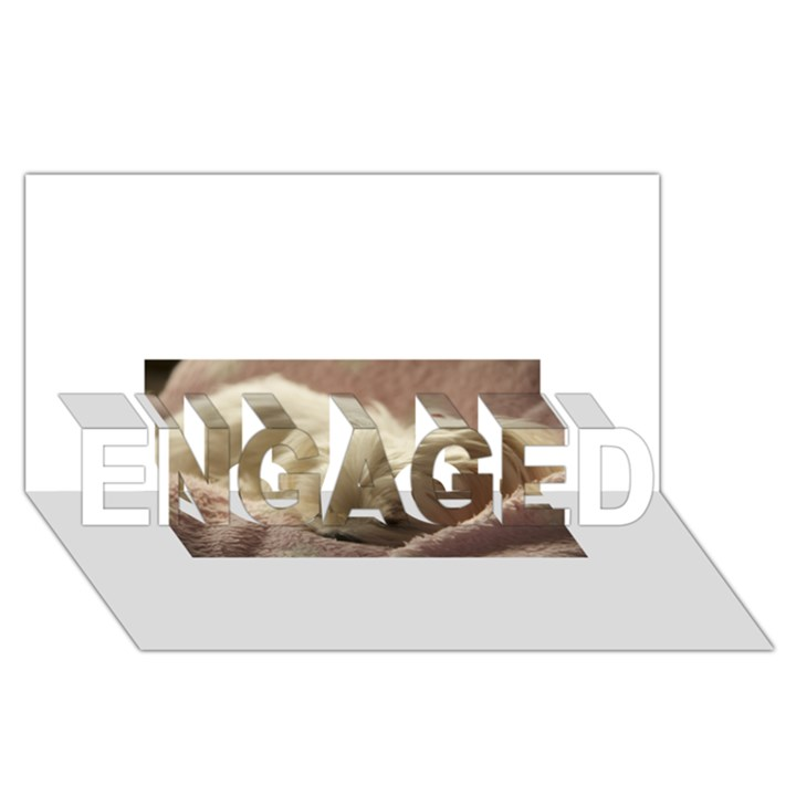 Maltese Sleeping ENGAGED 3D Greeting Card (8x4)