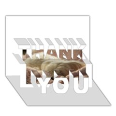 Maltese Sleeping THANK YOU 3D Greeting Card (7x5)