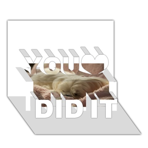 Maltese Sleeping You Did It 3D Greeting Card (7x5)