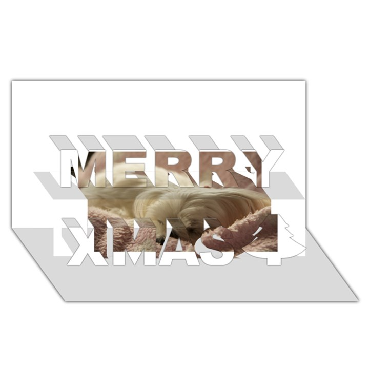 Maltese Sleeping Merry Xmas 3D Greeting Card (8x4)