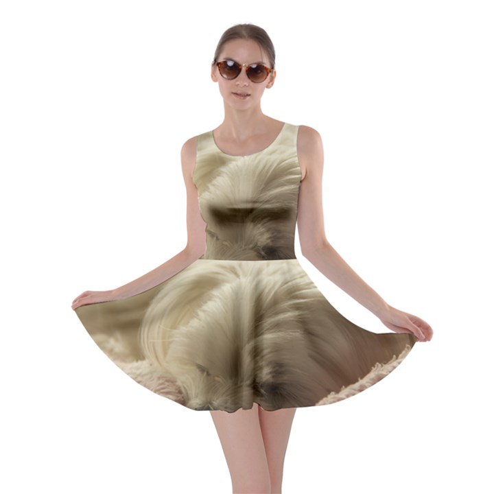 Maltese Sleeping Skater Dress