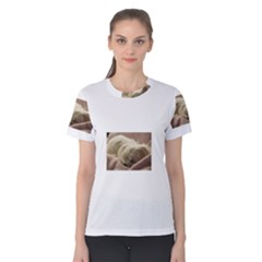 Maltese Sleeping Women s Cotton Tee