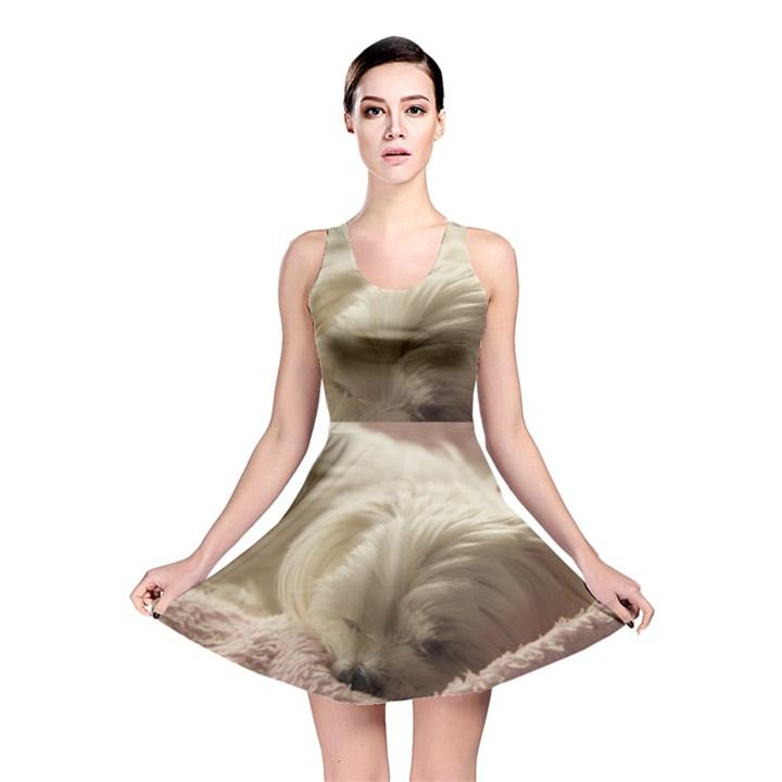 Maltese Sleeping Reversible Skater Dress