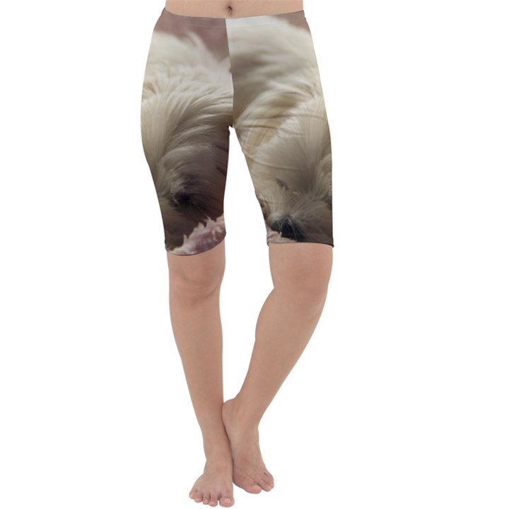 Maltese Sleeping Cropped Leggings