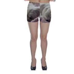Maltese Sleeping Skinny Shorts