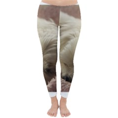 Maltese Sleeping Winter Leggings