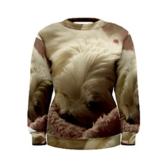 Maltese Sleeping Women s Sweatshirt