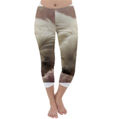 Maltese Sleeping Capri Winter Leggings
