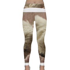 Maltese Sleeping Yoga Leggings