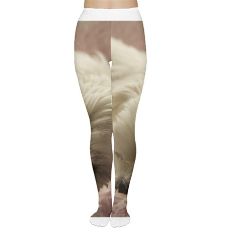 Maltese Sleeping Women s Tights