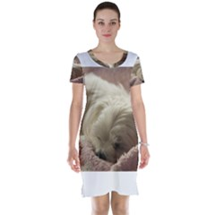 Maltese Sleeping Short Sleeve Nightdress