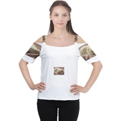 Maltese Sleeping Women s Cutout Shoulder Tee